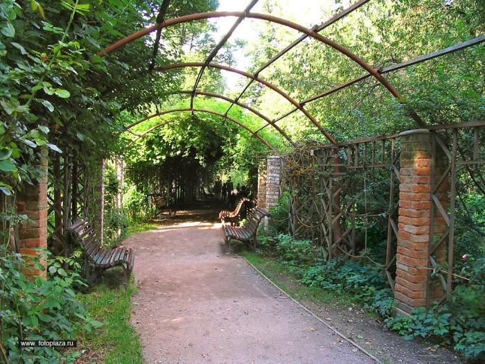 ботанический сад Москвы