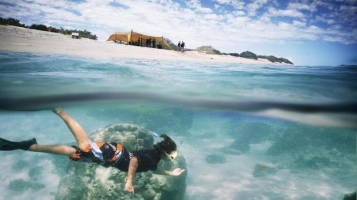 Дикий отдых в Австралии