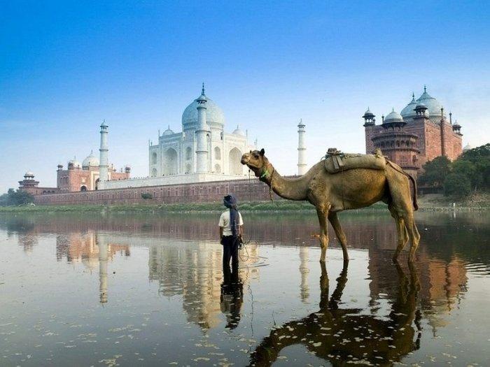 Загадочная Индия манит