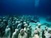 cancun-underwater-sculpture-park-3