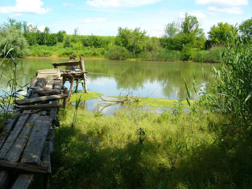 Рыбалка река сал ростовская область