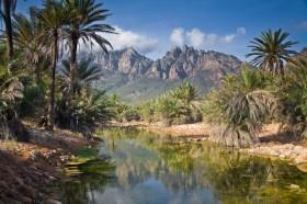 Остров Сокотра – земной рай