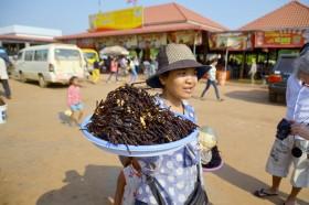 Особенности кухни Таиланда