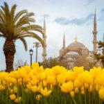 Отдых в Турции в марте